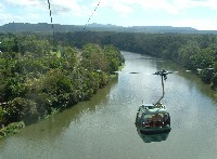 SFS-Australia and New Zealand: Rainforests