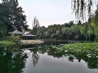 Tsinghua Summer School - Experiencing China